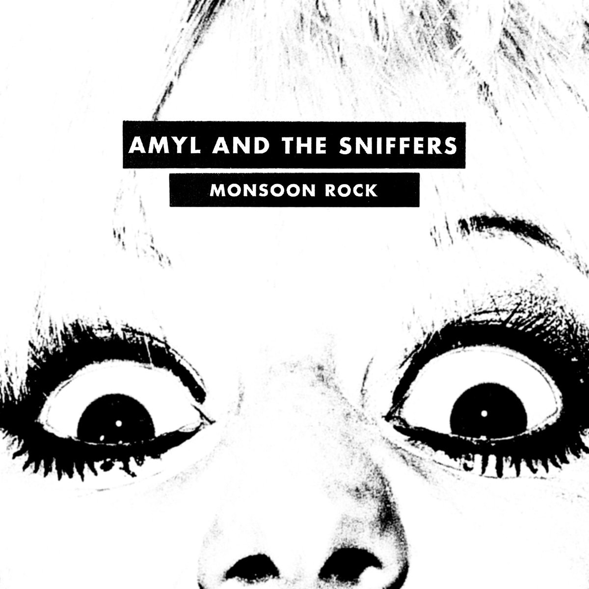 Amyl and the Sniffers' 'Monsoon Rock' is unmuzzled, untethered and untamed