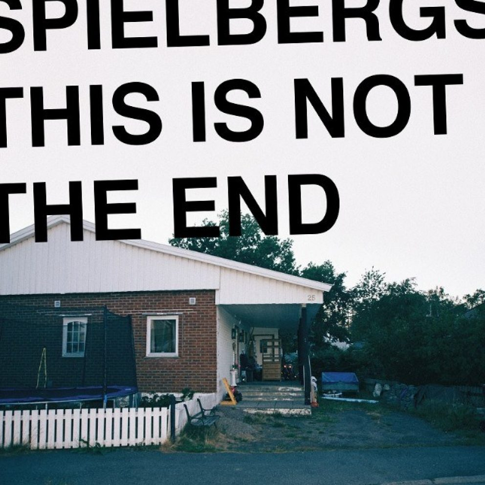 Spielbergs have created a determined debut with 'This Is Not The End'